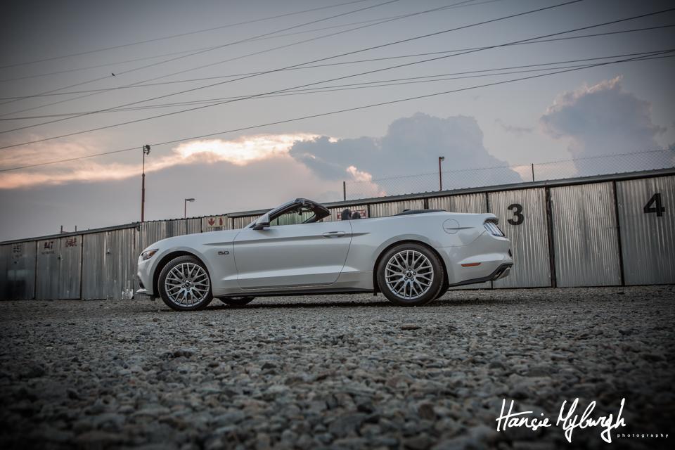 Mustang-11